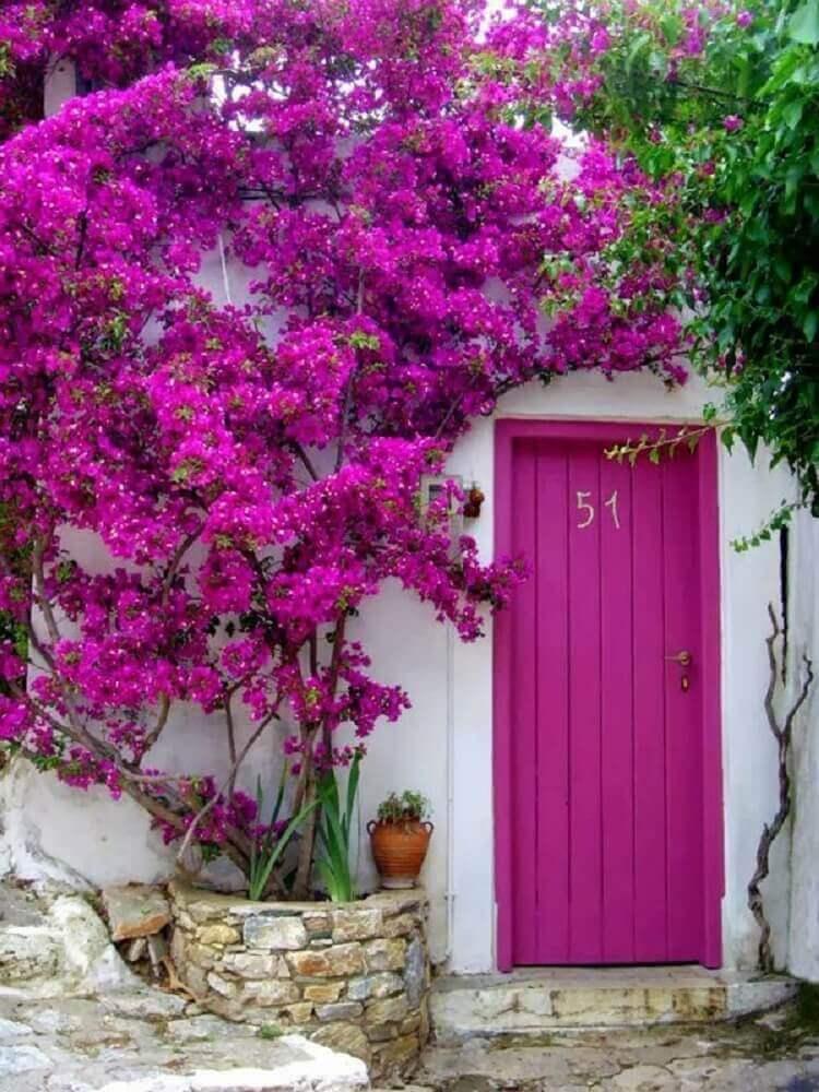 porta de madeira rosa