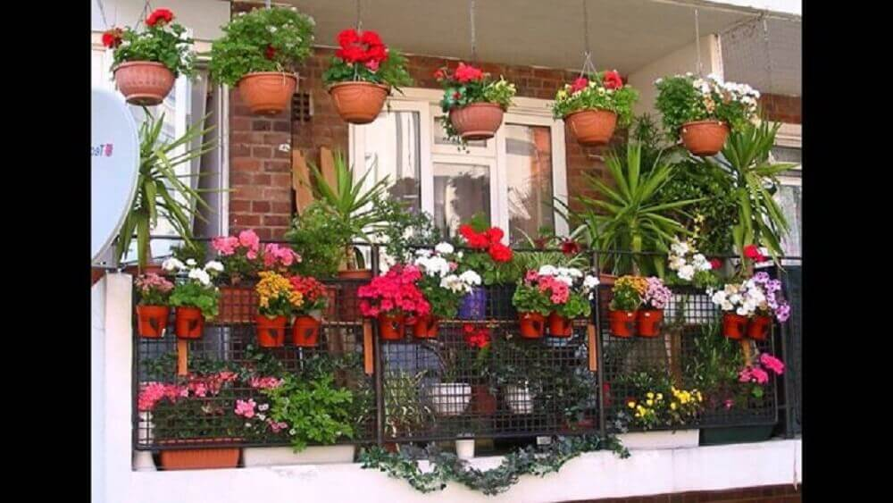 varanda com vasos de plantas