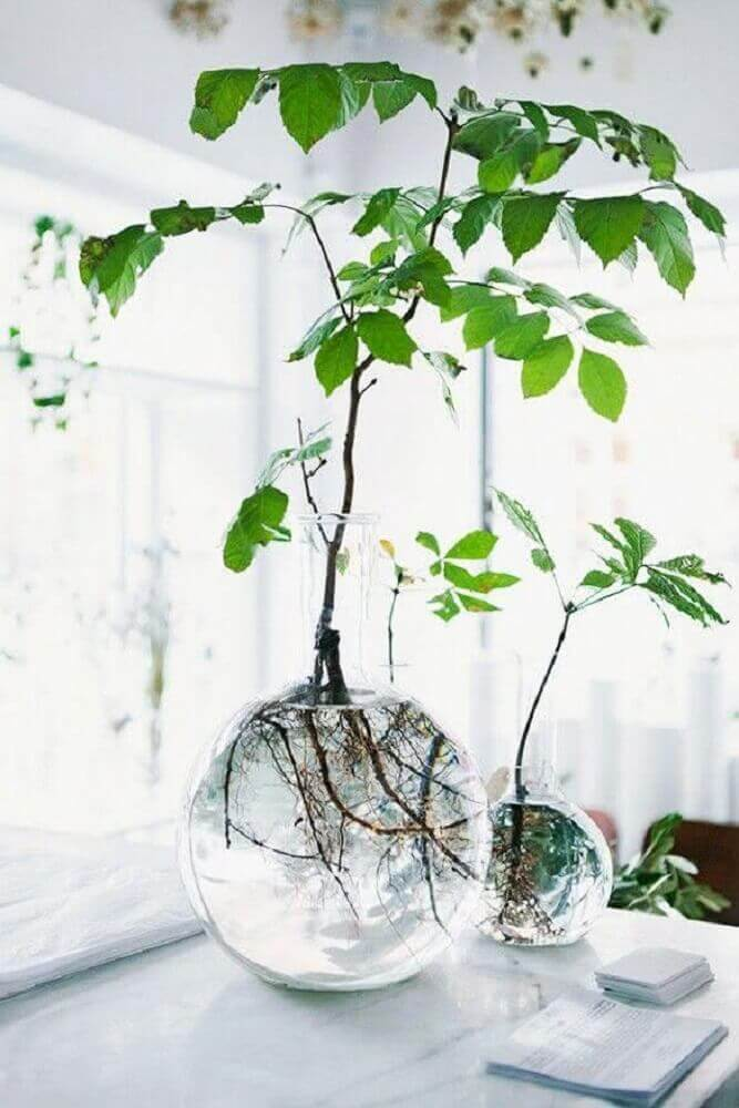 vasos decorativos de vidro