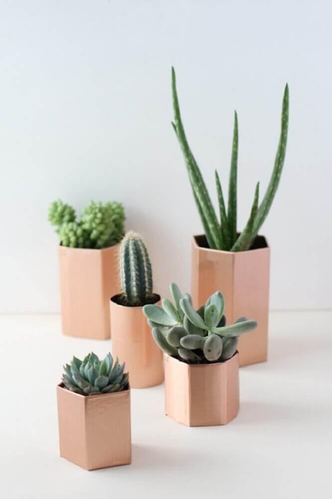 vasos decorativos para suculentas