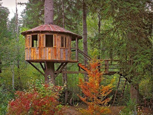 Casa na árvore aberta