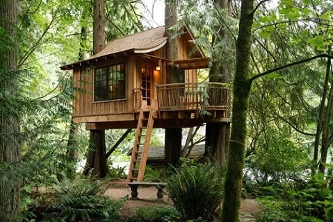 Casa na árvore baixa