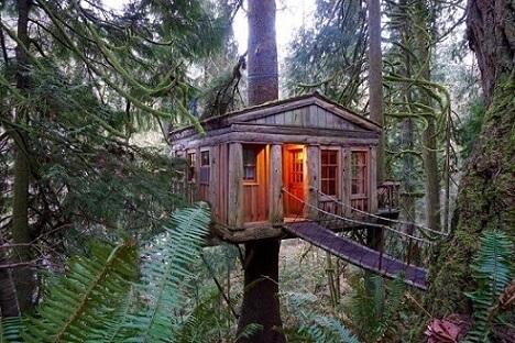 Casa na árvore clássica