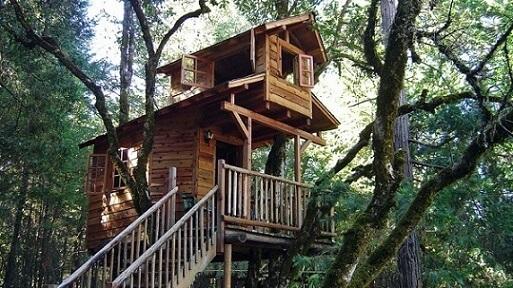 Casa na árvore com dois andares