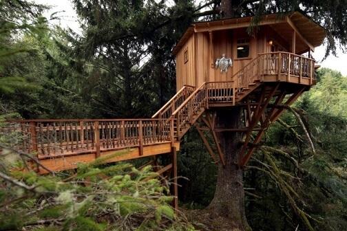 Casa na árvore com escada e ponte