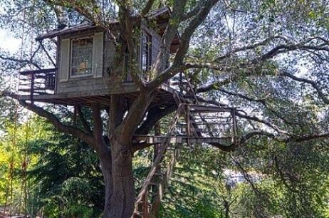 Casa na árvore com escada longa