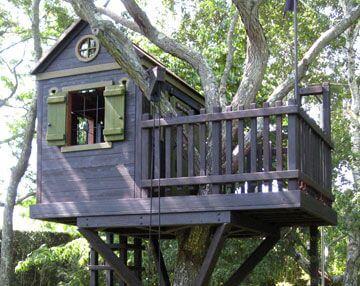 Casa na árvore com janela verde