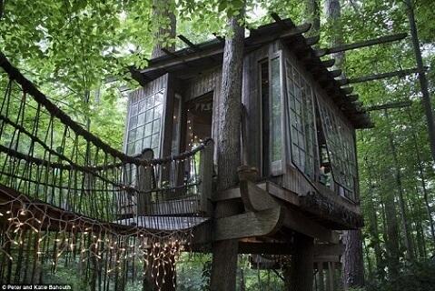 Casa na árvore com luzes na ponte