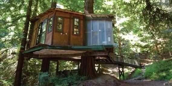 Casa na árvore com ponte de madeira