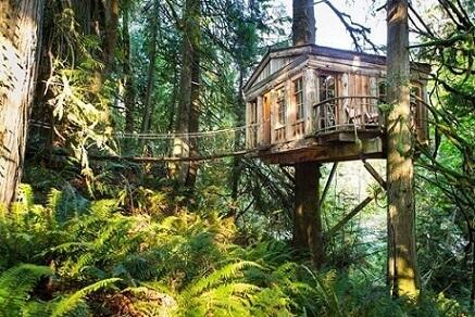 Casa na árvore com sacada aberta