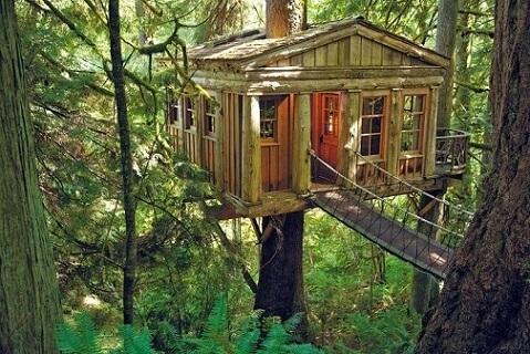 Casa na árvore de madeira clara