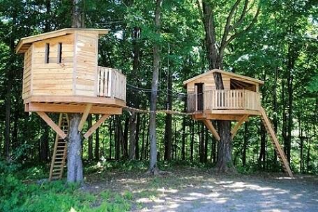 Casa na árvore dupla