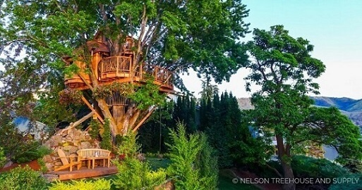 Casa na árvore em árvore verde