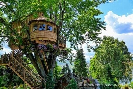 Casa na árvore grande