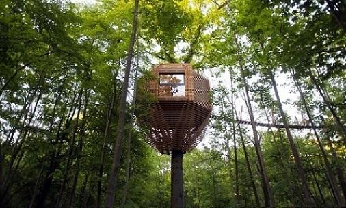 Casa na árvore moderna