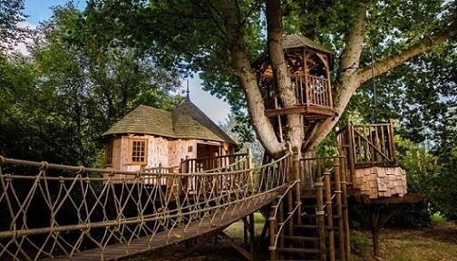 Casa na árvore pequena