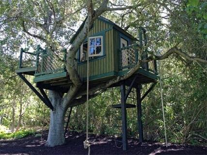 Casa na árvore verde