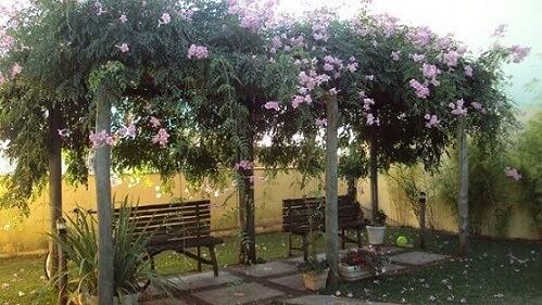 Como fazer um jardim com pergolado