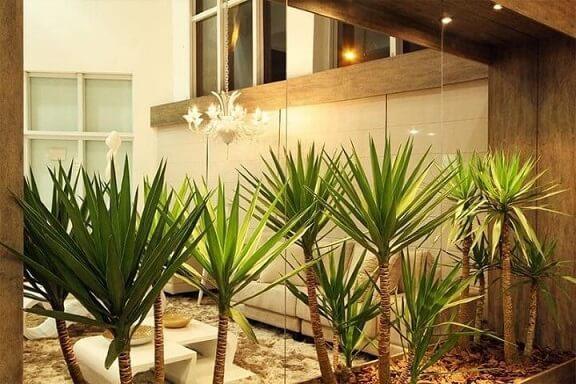 Como fazer um jardim de inverno com espelho Projeto de Adriana Mantovani