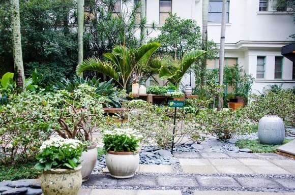 Como fazer um jardim externo com vasos de plantas Projeto de Alalou Paisagismo