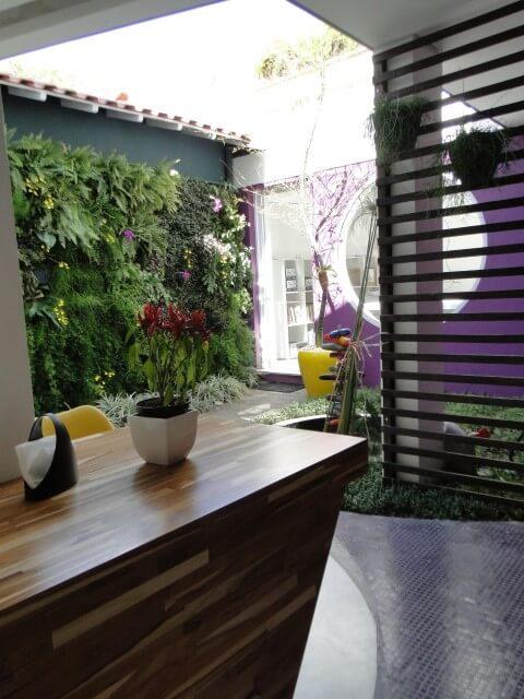 Como fazer um jardim vertical externo Projeto de Carmem Lucia Teixeira Avila