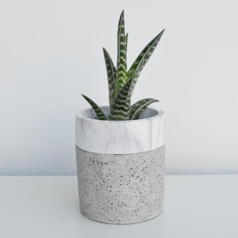 Como fazer vaso de cimento com detalhe de pedra