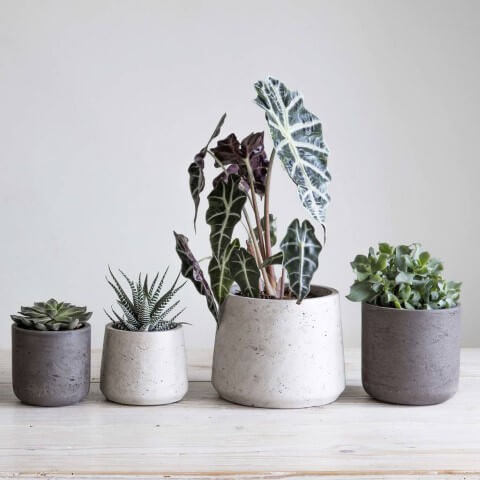Como fazer vaso de cimento de tamanhos diferentes
