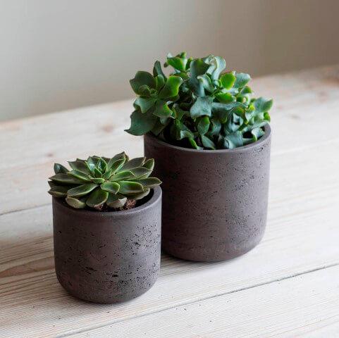 Como fazer vaso de cimento preto