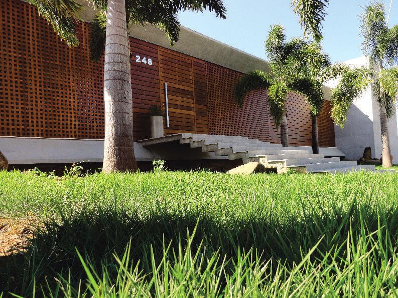 Cultive um lindo gramado em frente a casa