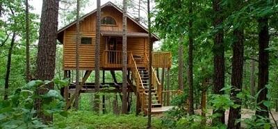 casa na árvore com escada