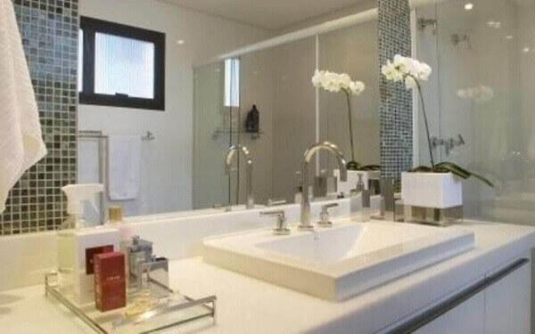 Como cuidar de orquídea banheiro úmido