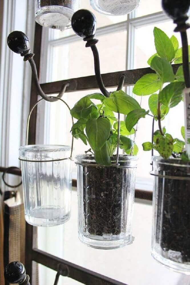 mini horta em apartamento com feitas de copo de gachos de ferro