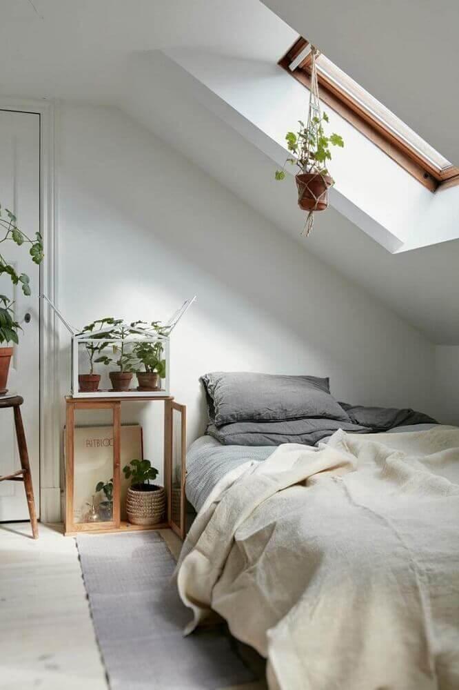 vasos de plantas para quarto minimalista