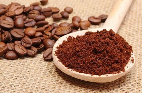 Mata formiga com borra de café