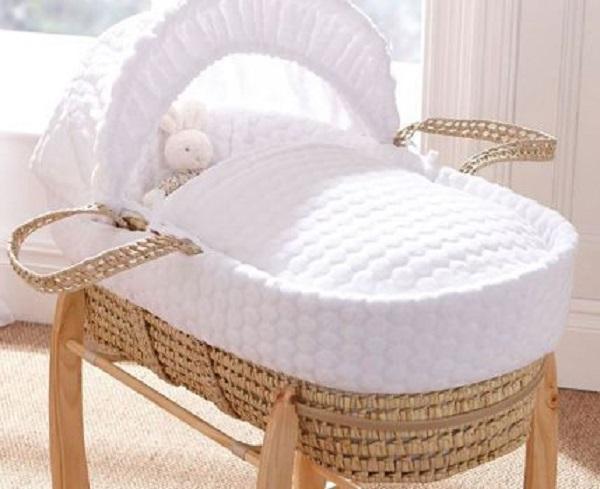 Modelos de berço Moises para transportar o bebê