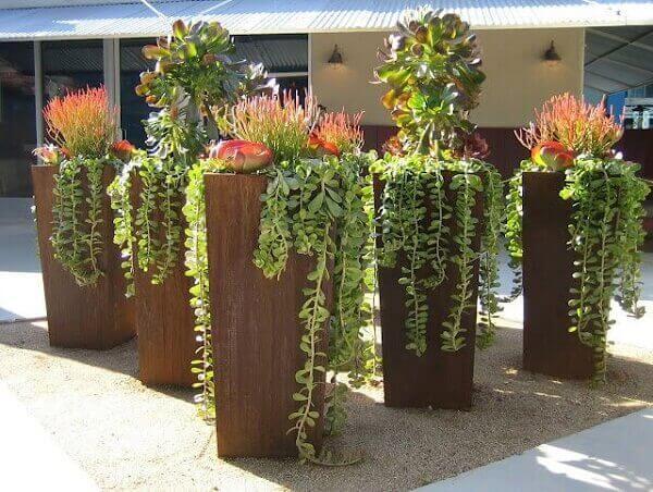 Vasos com plantas para jardim