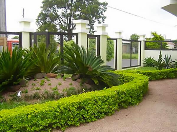 cerca viva para jardim