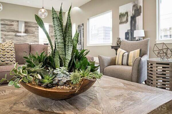 Plantas com vasos para enfeitar a mesa da sala de jantar