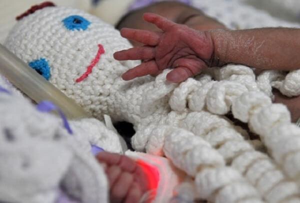 O polvo ajuda no desenvolvimento dos bebês