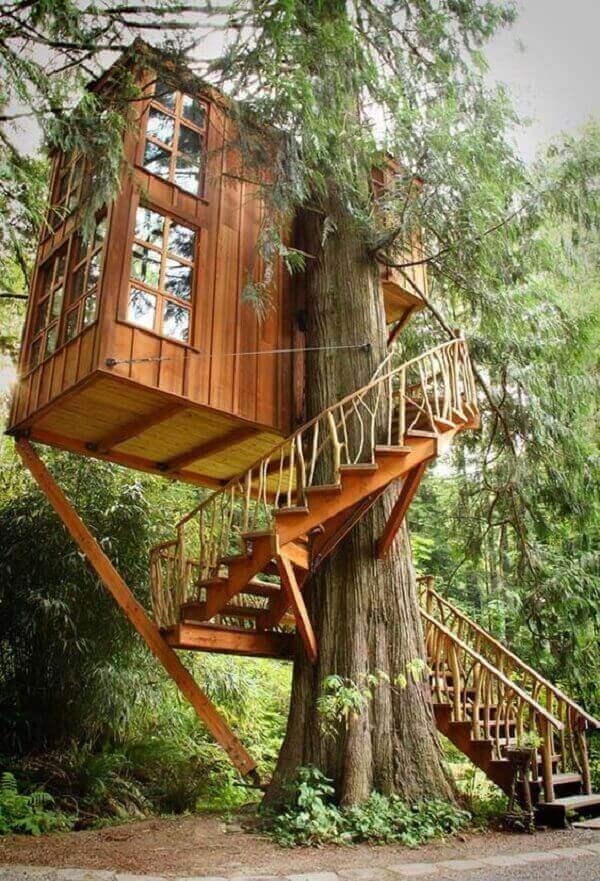 A escada que dá acesso a casa na árvore contorna o tronco