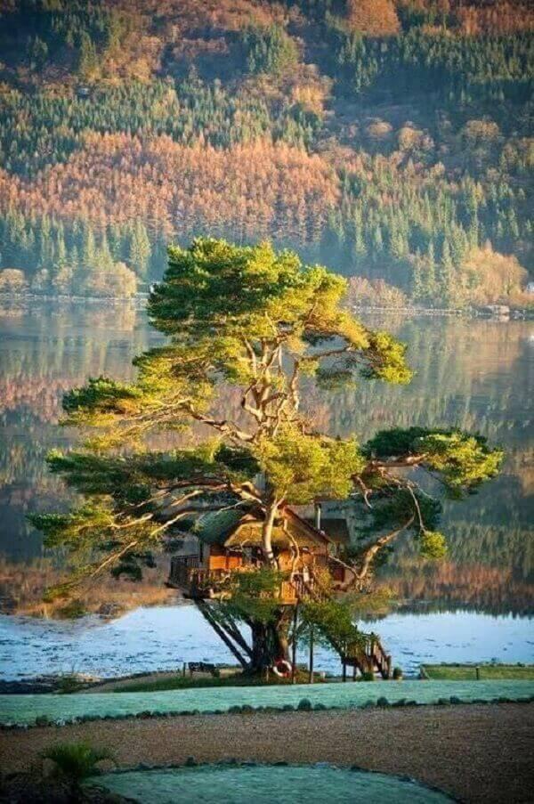 A casa na árvore deixou a paisagem do local ainda mais linda