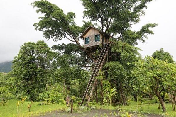 A escada de madeira dá acesso a casa na árvore