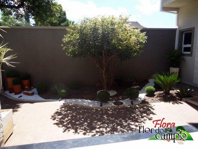 Pedras para jardim com vasos de barro Projeto de Flora Flor do Campo