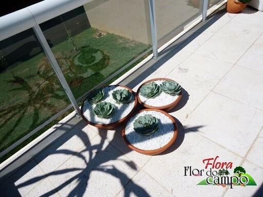 Pedras para jardim em vasos de barro Projeto de Flora Flor do Campo