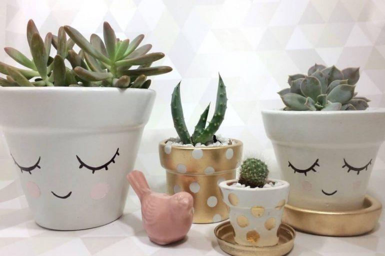 Suculenta vasos decorados
