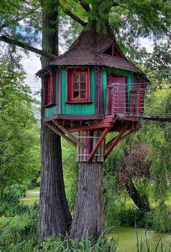 Pinte com cores vivas a fachada da casa na árvore