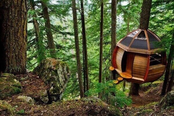 Modelo de casa na árvore construída no meio da floresta