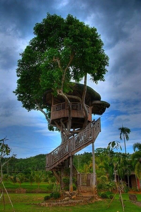 É possível construir uma casa na árvore compacta