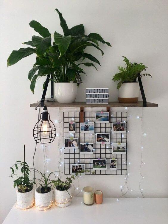 Mural de fotos com plantas e luzes