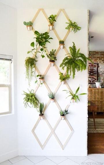 Paredes decoradas com plantas